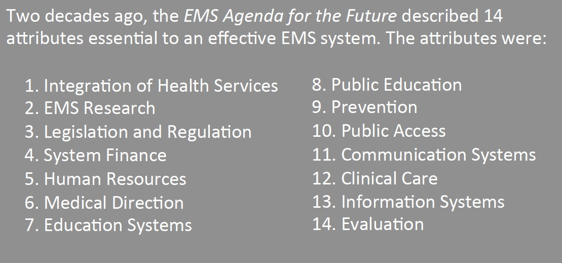 EMS Agenda for the Future